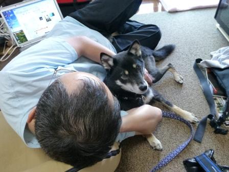 愛犬の床施工8