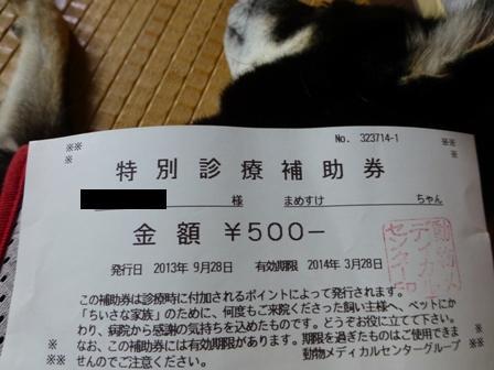動物病院092816