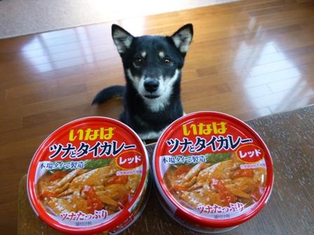 いなばレッド缶カレー1