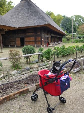 日本民家集落博物館12