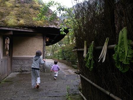 2013_3_gajoen_10.JPG