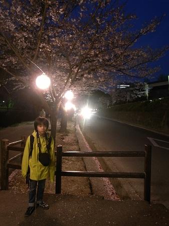 2013_3_kumamoto_3.JPG