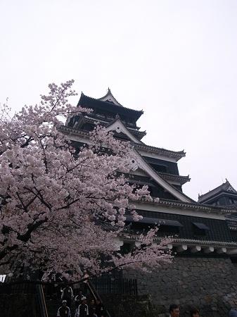 2013_3_kumamoto_9.JPG