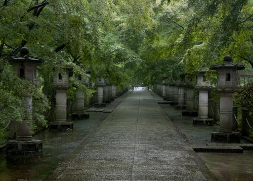 雨の参道2