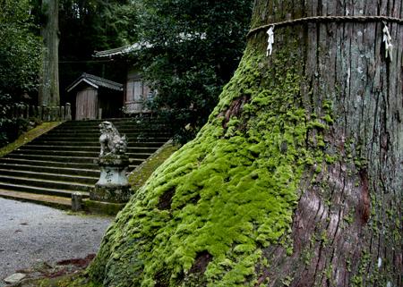 2内尾神社2