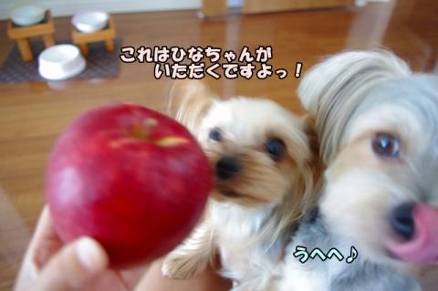 岩手のリンゴ④