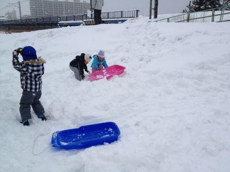 snow4_20140211234148505.jpg