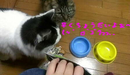 0501_hayaku_20130502004448.jpg