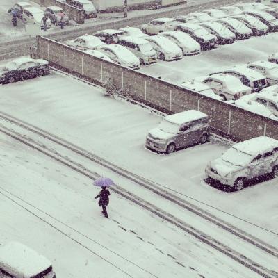 2013年4月21日、雪