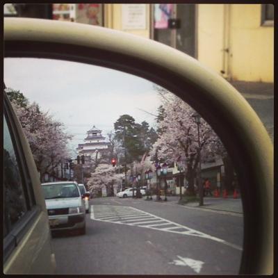 ミラー越しのお花見@北出丸通り_2013/04/18