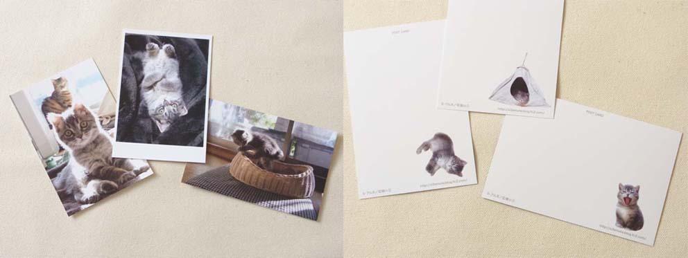 アム太ファンドポストカード のコピー