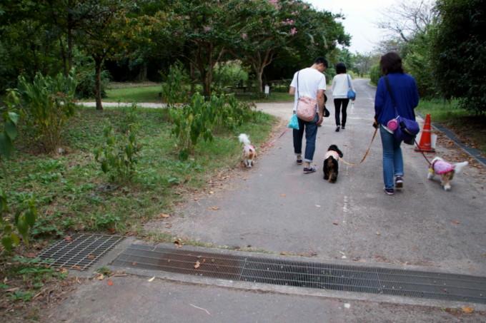 blog_DSC08751.jpg