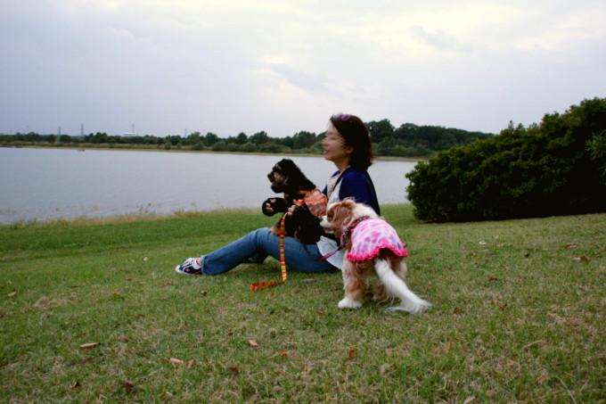 blog_DSC09083.jpg
