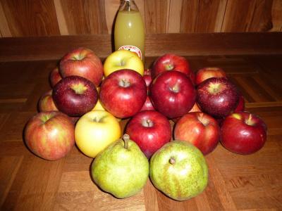 大場さんちのリンゴ