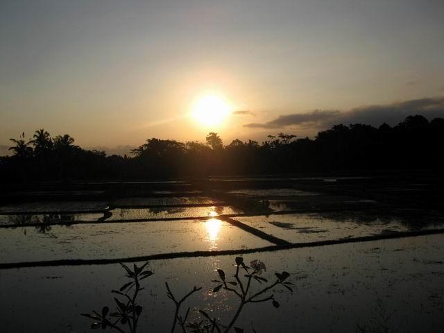 201426夕陽