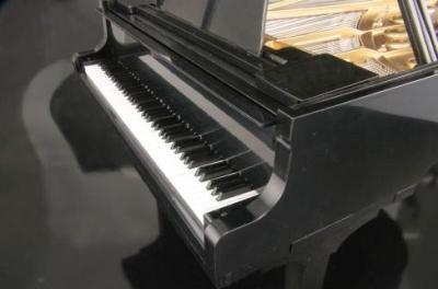 piano7_201311051812248d4.jpg