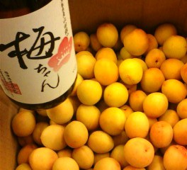 20130626野花完熟生梅