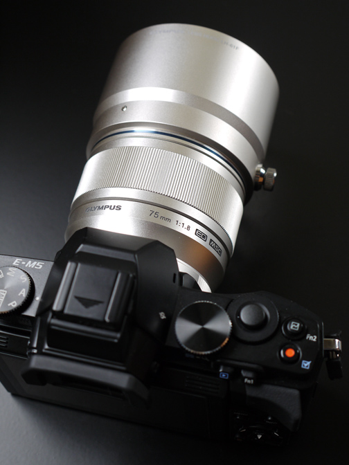 OM-D+MZD75mmF1.8+LH-61F