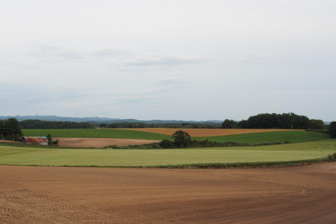 パレットの丘