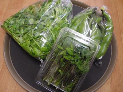20130513山菜お福わけ