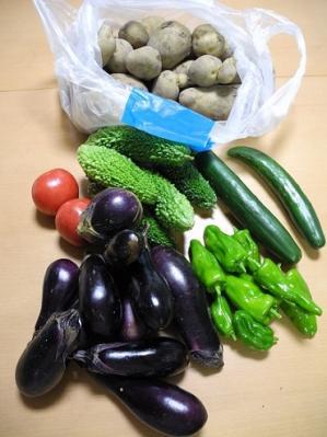 20130902採れたて野菜1