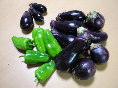 20130902採れたて野菜2