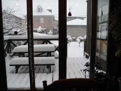 20140208今季初の大雪!