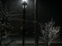 深夜に降り始めた雪・・・