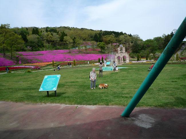 菊池の花公園