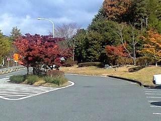 20121110福島の秋(その1)