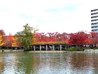 20121111福島の紅葉(その1)