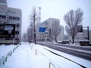 20130114雪景色(その4)