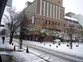 20130114雪景色(その6)