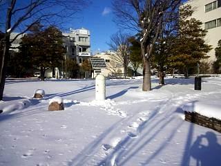 20130127雪景色(その3)