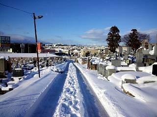 20130127雪景色(その4)