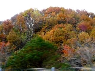 20121110福島の秋(その5)
