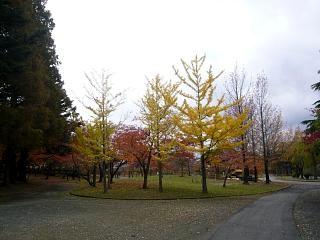 20121111福島の紅葉(その9)