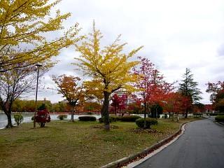 20121111福島の紅葉(その10)