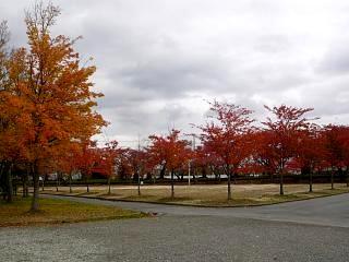 20121111福島の紅葉(その11)