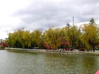 20121111福島の紅葉(その12)