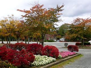 20121111福島の紅葉(その16)