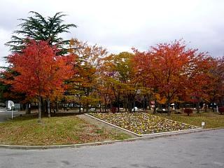 20121111福島の紅葉(その17)