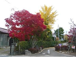 20121111福島の紅葉(その24)