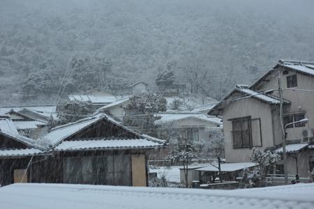 snow2014208.jpg