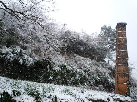 雪2(2014-02-06)