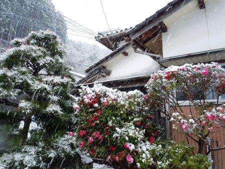雪3(2014-02-06)