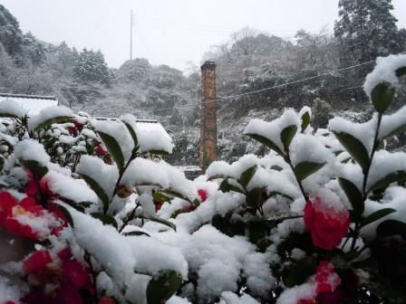 雪7(2014-02-06)