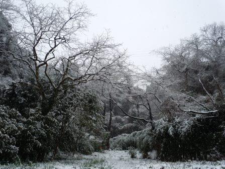雪12(2014-02-0)