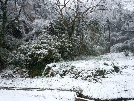 雪14(2014-02-0)