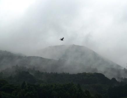 嬉野の朝の風景7(2013-06-30)